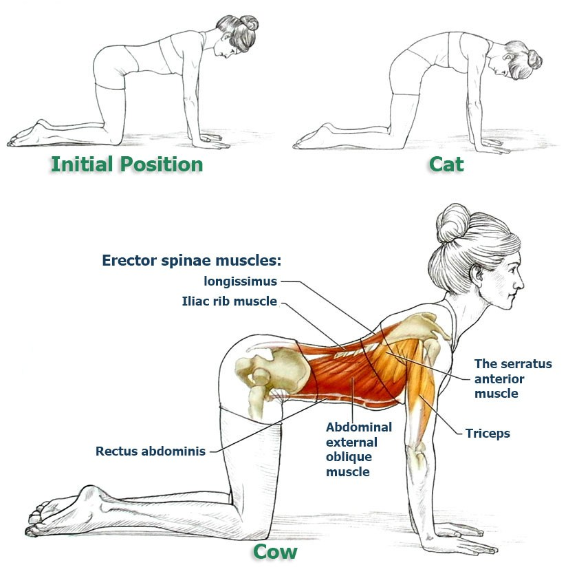 This Exercise Will Improve Your Posture and Bring Relief to Your Back and Spine