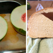 Over 100 Times People Absolutely Lost The Food Lottery